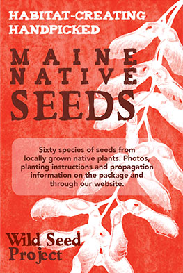 Wild Seed Project Seed Package and Seed  Sale