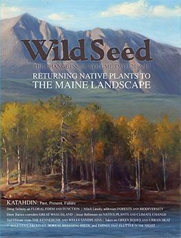 Wild Seed Magazine 2016
