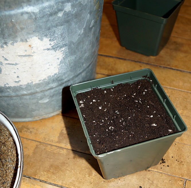 Soil filled pot ready for planting