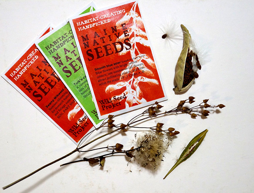 Wild Seed Project native seed packets and seed pods