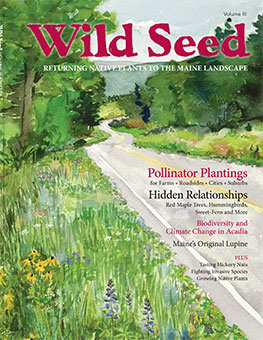 Wild Seed Magazine 2017 for sale