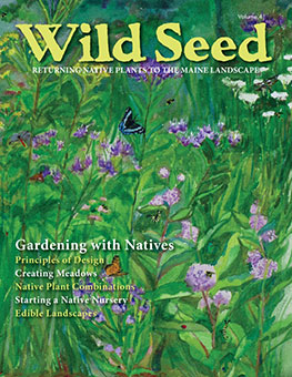 Order Wild Seed 2018 Now