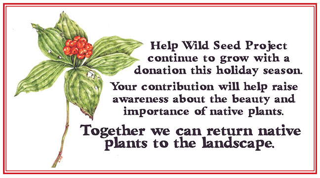 Help Wild Seed Project grow with a donation today.