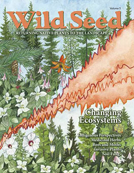 Order Wild Seed magazine 2019 now
