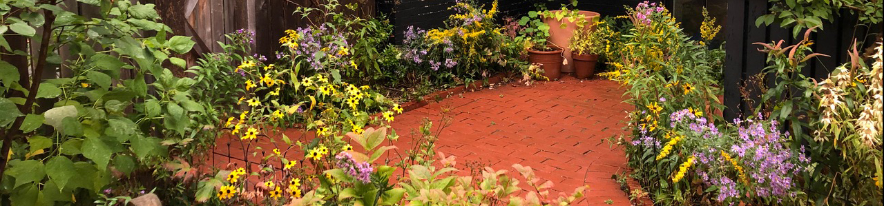 Brick patio with native plants