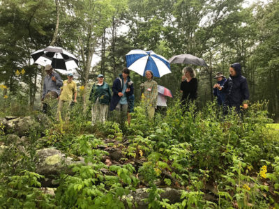 Wild Seed Project Events