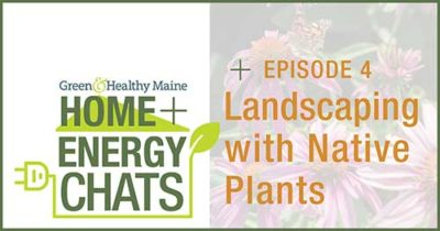 Green & Healthy Maine Homes chat series logo