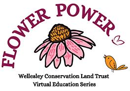 Wellesley Conservation Land Trust Flower Power Logo